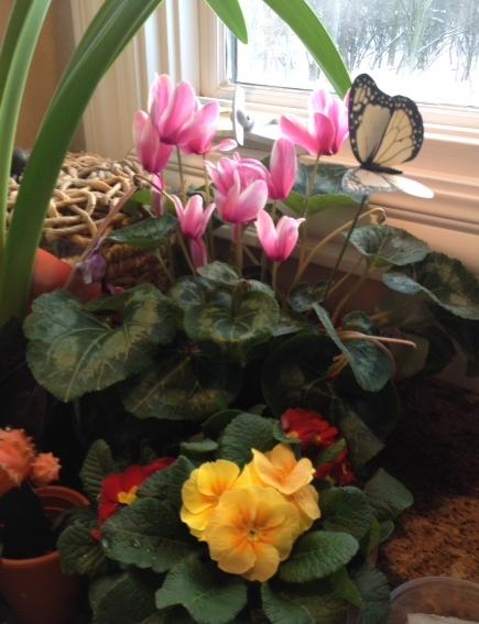MakingThingsBloomflowers.1