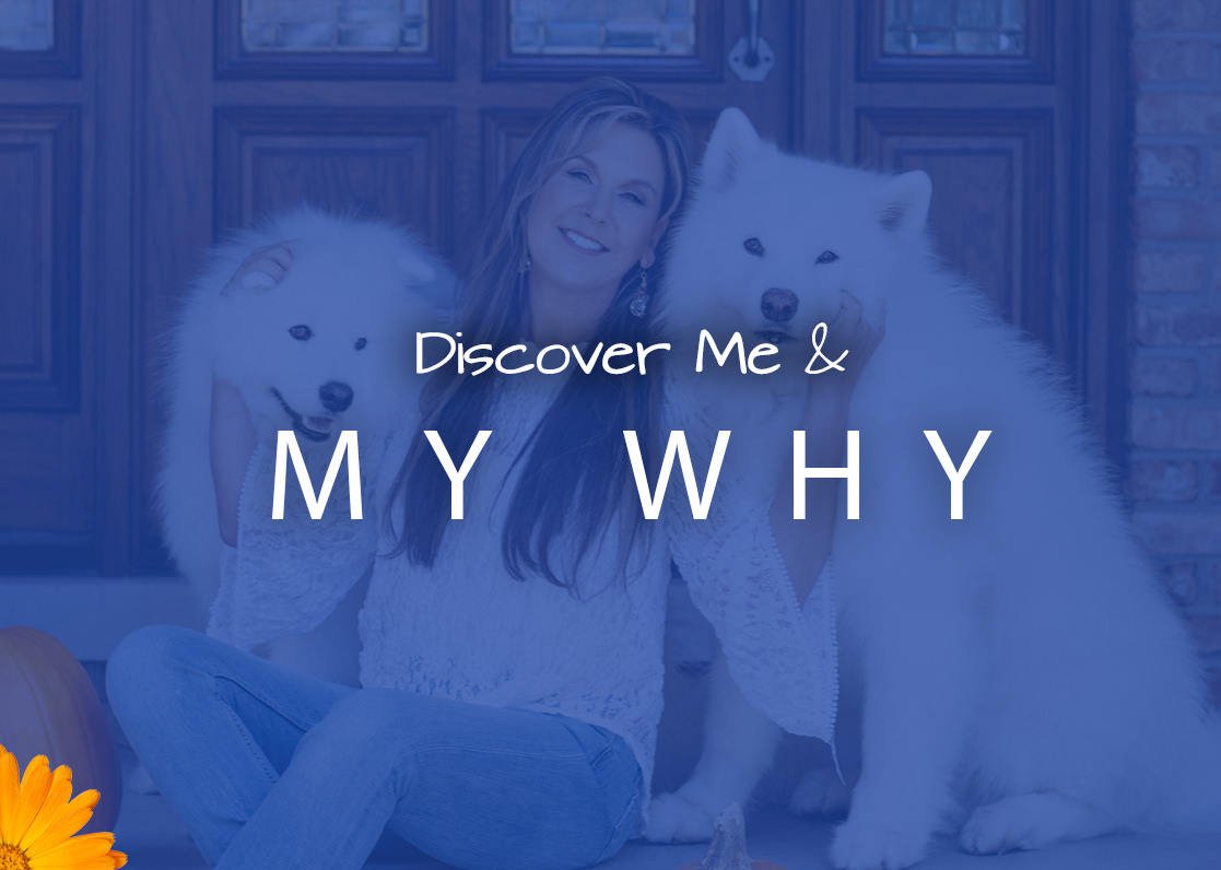 discovermeandmywhy